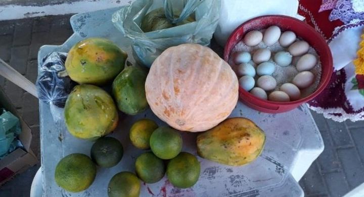 Governo lança Programa de Alimentação Saudável nesta quarta (23)