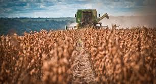 Baixa Grande do Ribeiro coloca o Piauí no topo do ranking de maior produção agrícola do Brasil